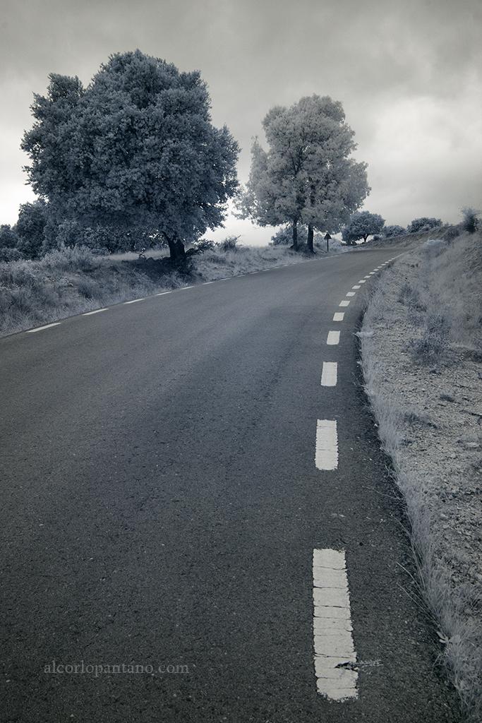 _MG_7955 cerco carretera ok flickr